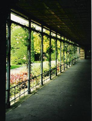 Blick auf idyllischen Garten