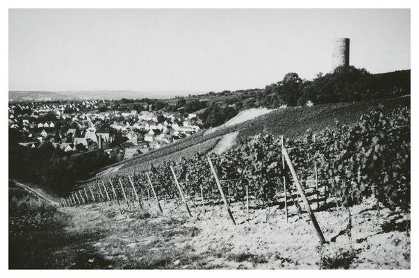 Blick auf Kiedrich und Ruine Scharfenstein (reloaded)