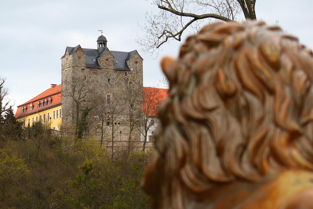 """Blick auf """"Schloss Ballenstedt"""""""