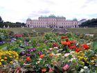 Blick auf Schloß Belvedere in Wien