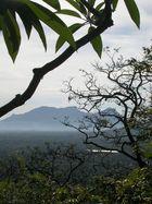 Blick auf Sigiria