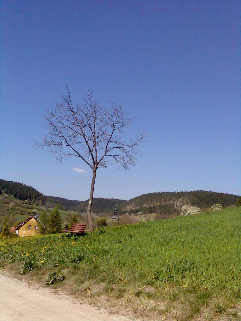 Blick auf Thälendorf