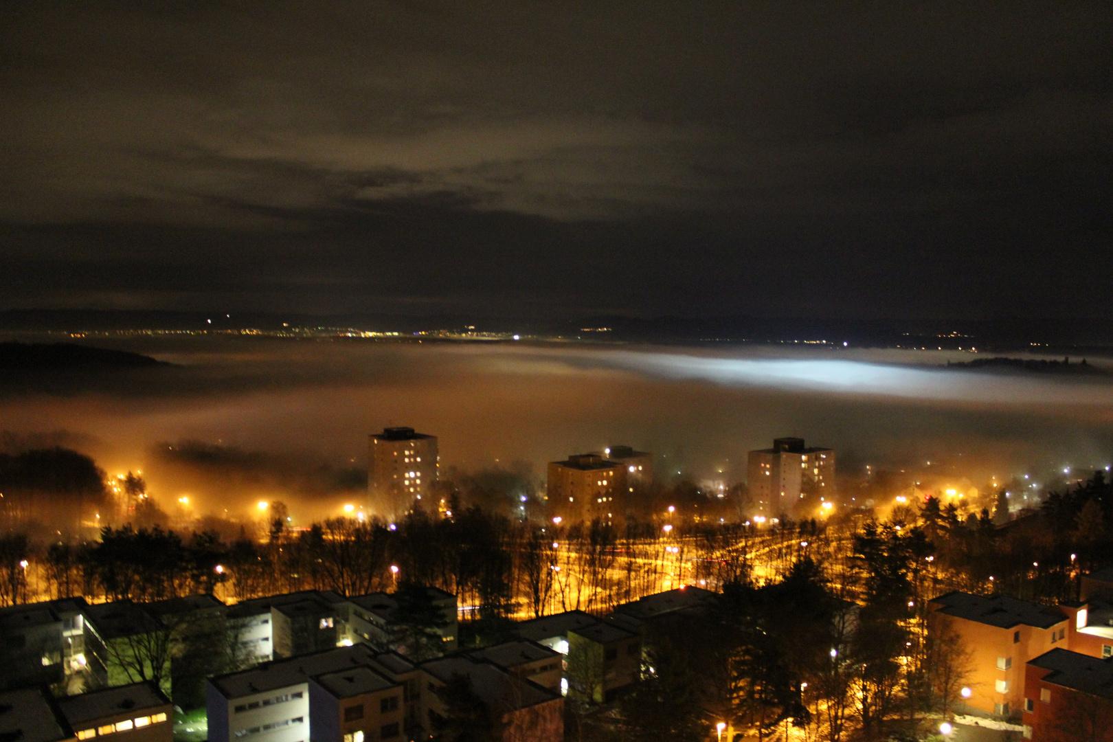 Blick auf Tübingen bei Nebel