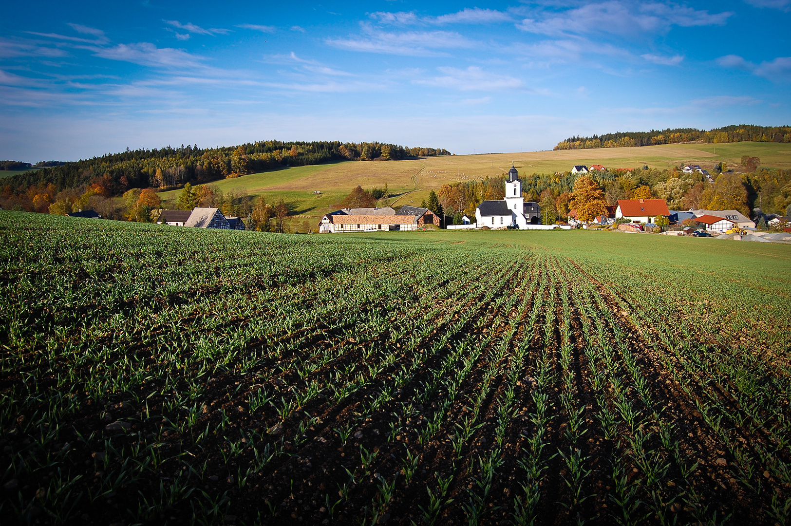 Blick auf Weckersdorf in Ostthüringen II