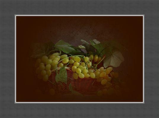 Blick auf... Weintrauben