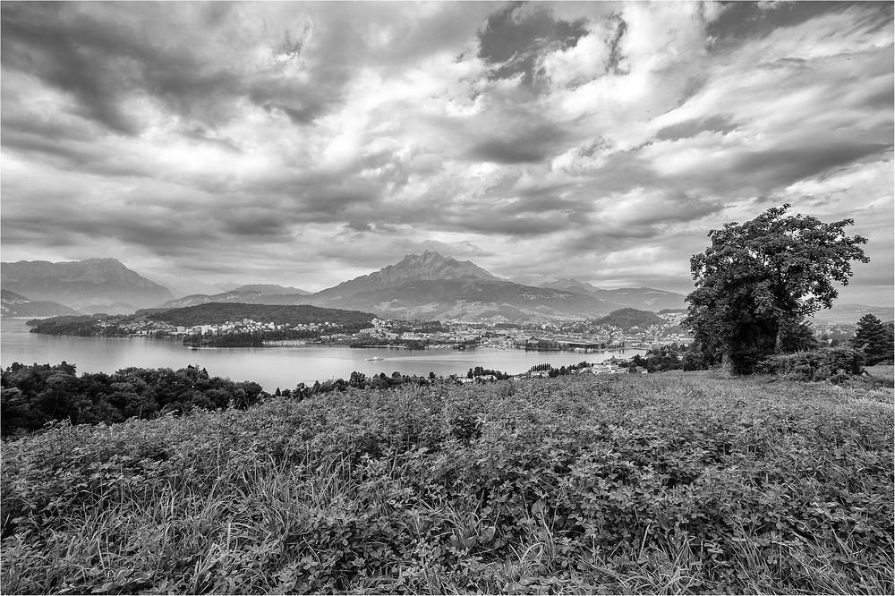 Blick aufs Luzerner Seebecken