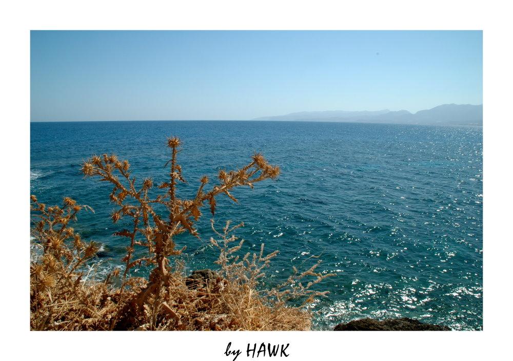 Blick aufs Meer....