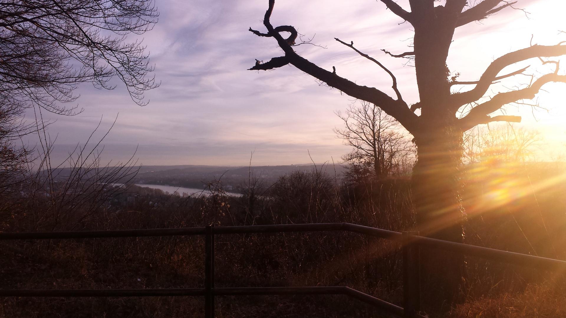 Blick aus dem Ennert Wald 2014