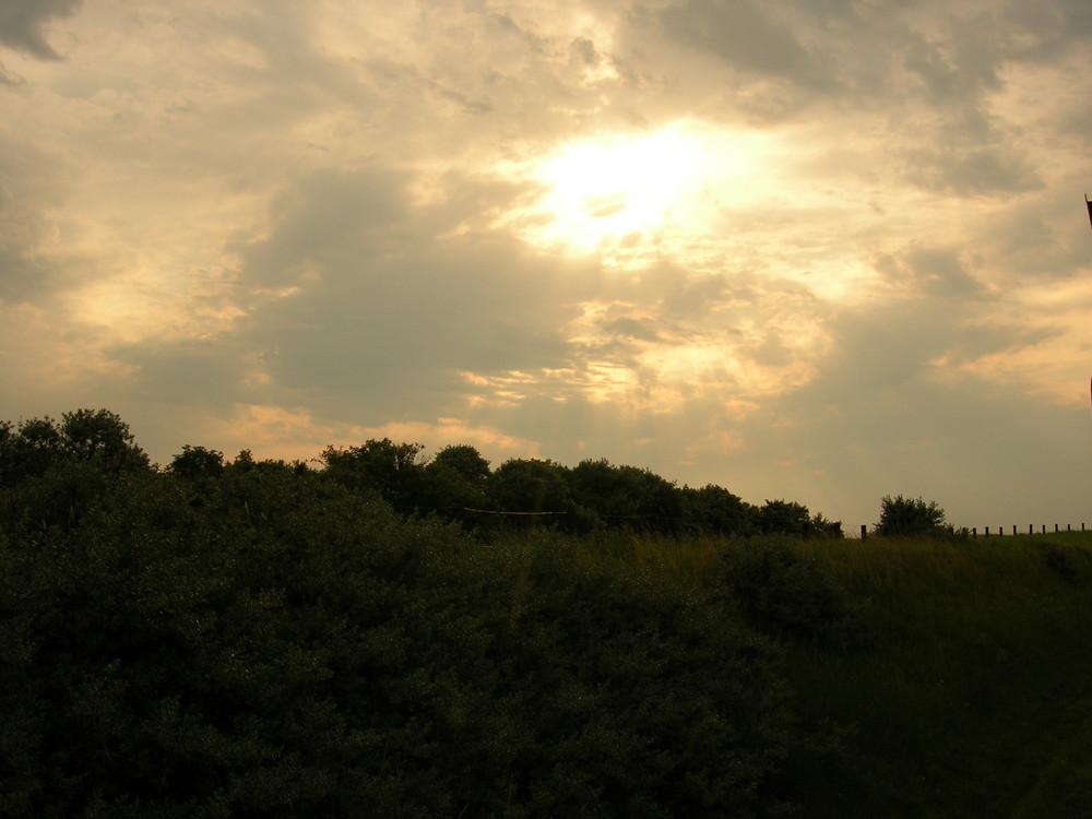 Blick aus der Inselbahn auf Langeoog