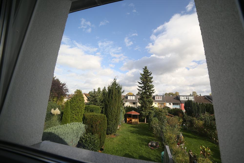 Blick aus meinem Bürofenster