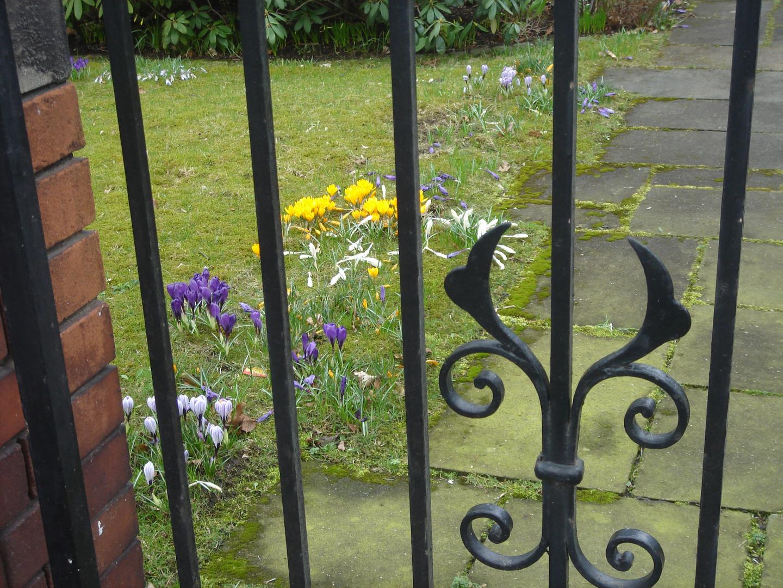 Blick durch den Gartenzaun