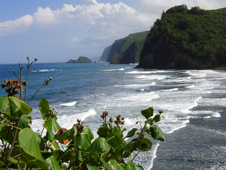 Blick entlang der Hamakua Küste, North Kohala, Big Island of Hawaii