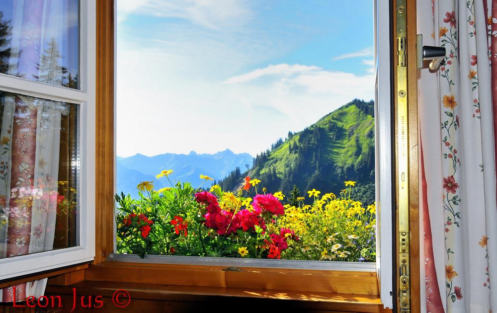 Blick aus dem fenster bilder  Blick Fenster Schwabenhaus Foto & Bild | jahreszeiten, frühling ...