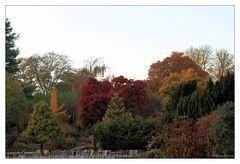 Blick in den Botanischen Garten Krefeld
