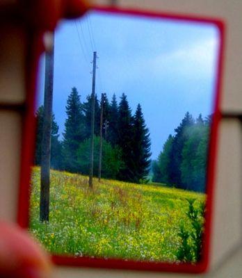 Blick in den (Rück) Spiegel