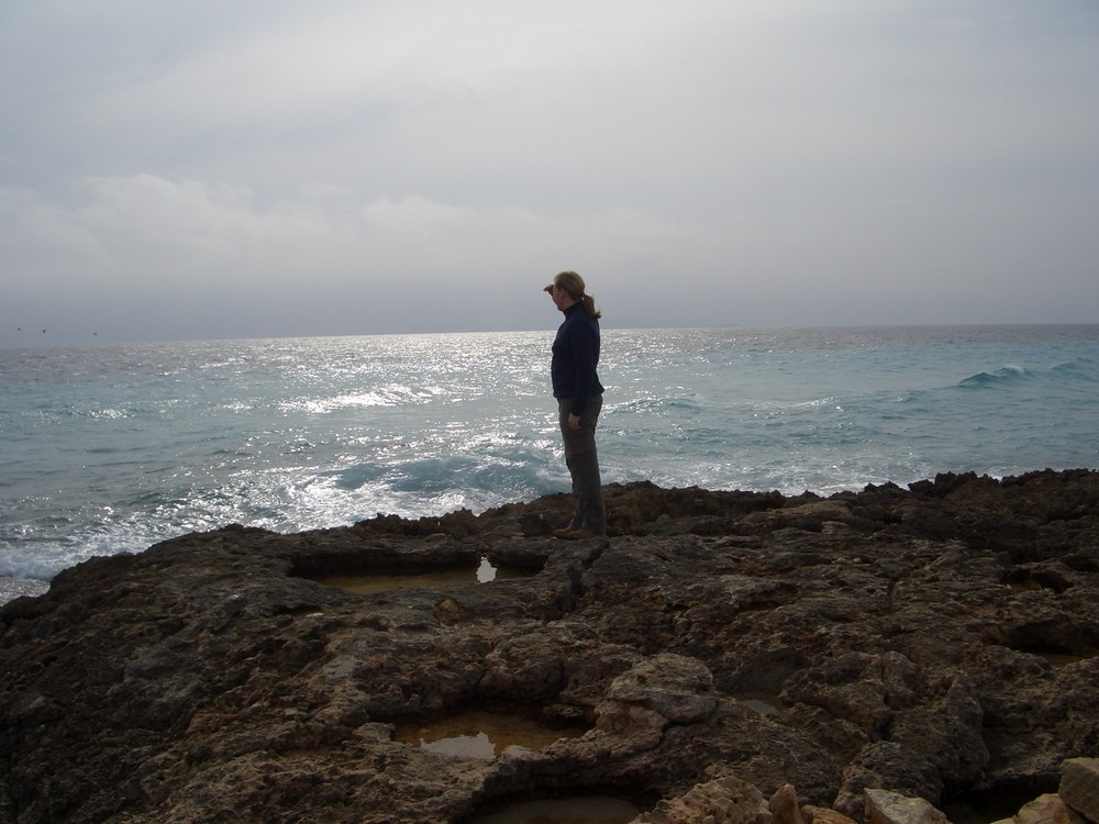 Blick in die Ferne (Cap de Ses Salines)