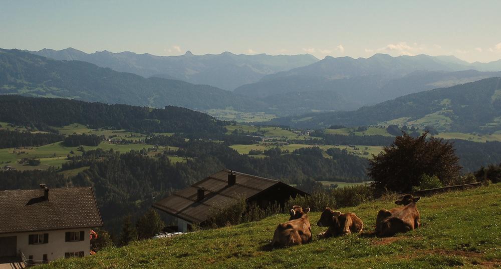 Blick in die österreichische Voralpenlandschaft