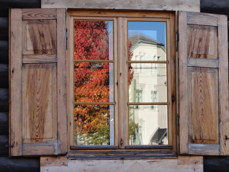 Blick ins Fenster