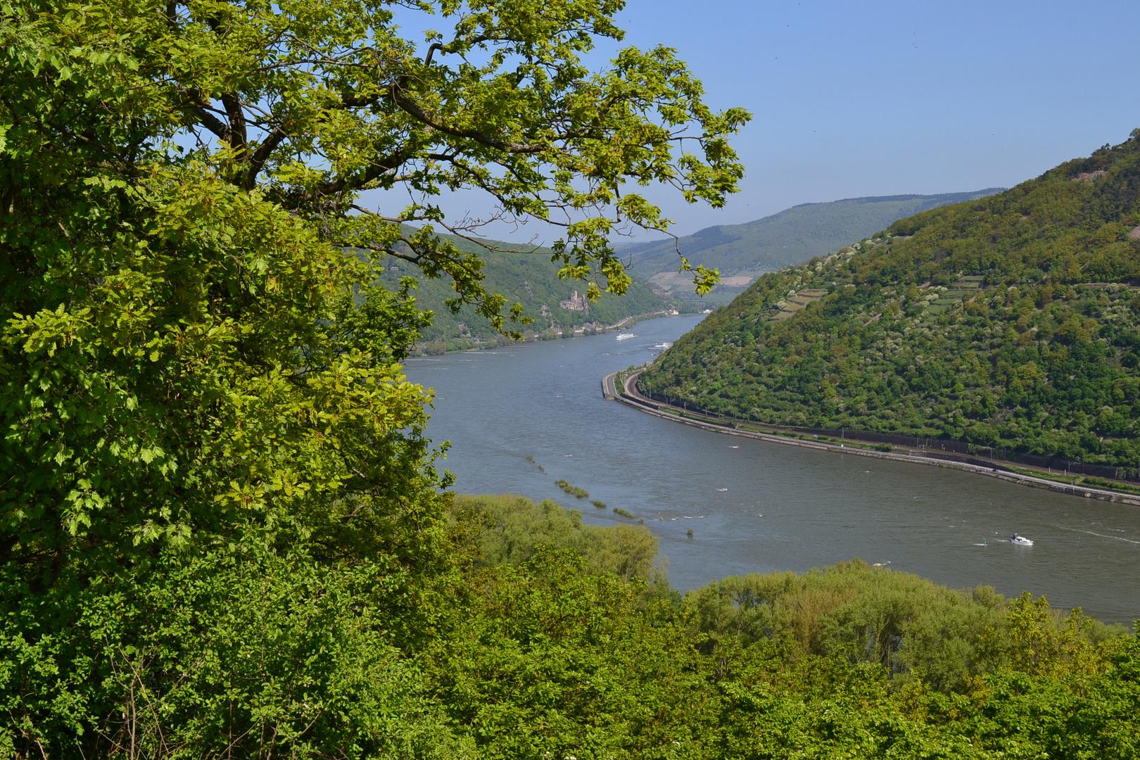 Blick ins Mittelrheintal