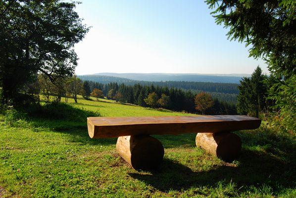 Blick ins Pöbeltal im Osterzgebirge Nähe Altenberg