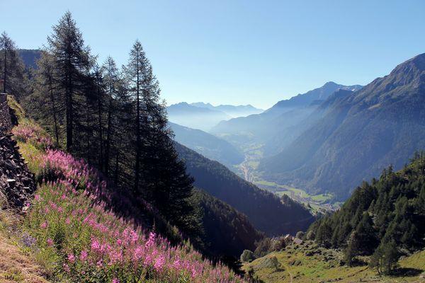 Blick ins Tal (820)