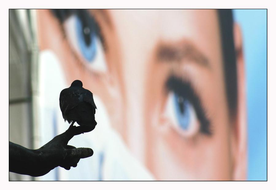 Blick-Kontakt