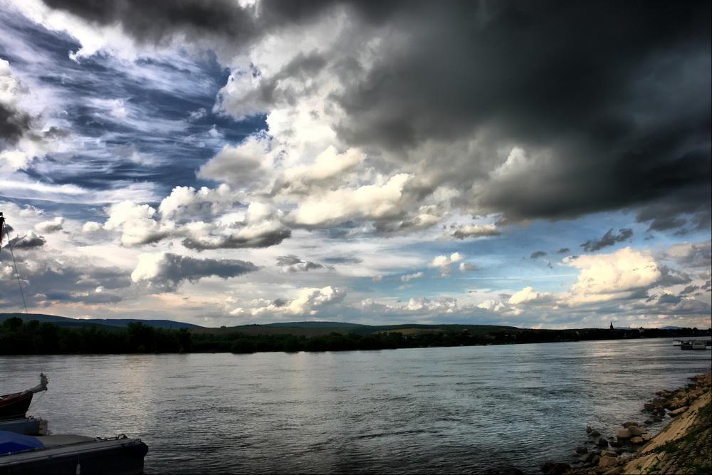 Blick nach Eltville am Rhein