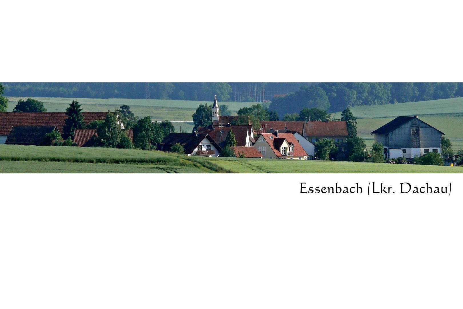 Blick nach Essenbach