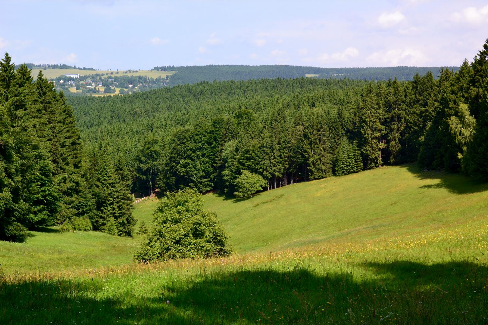 Blick nach Schnett über die Höhen des Thüringer Waldes…