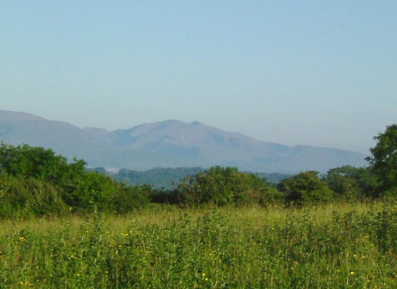 Blick nach unseren Bergen (vor 10 Minuten)