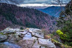Blick über das Tal der Wildgutach im Mittleren Schwarzwald