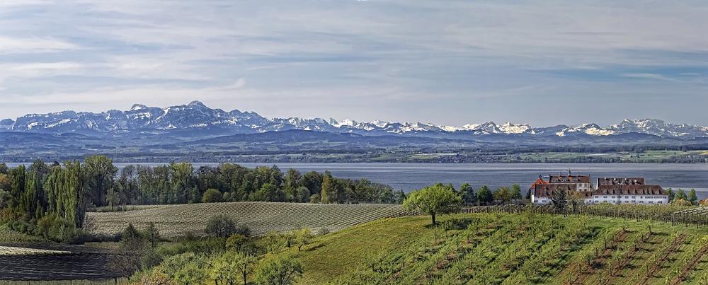 Blick über dem Bodensee
