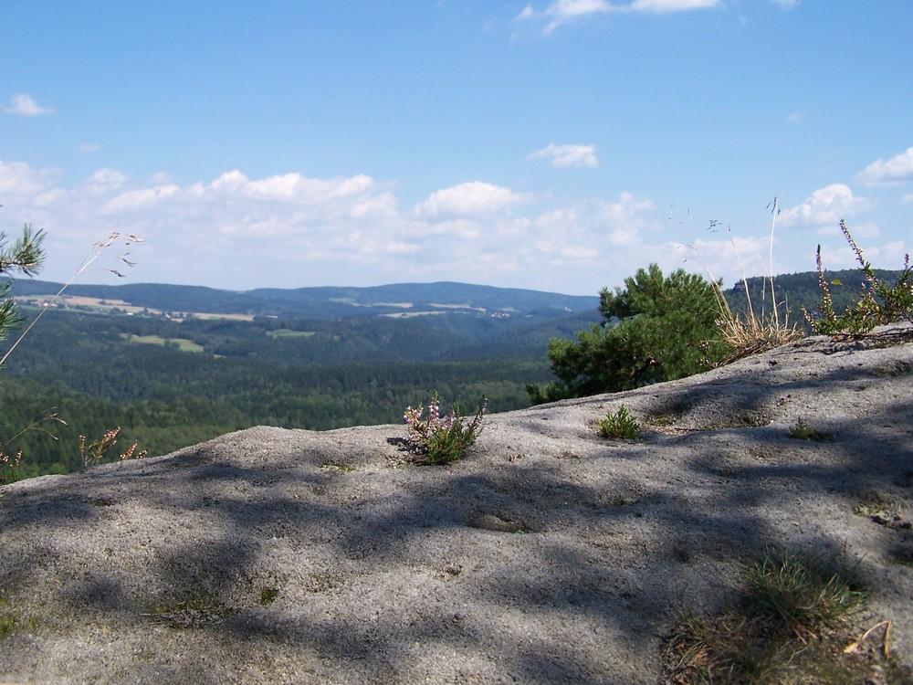 Blick über den Fels