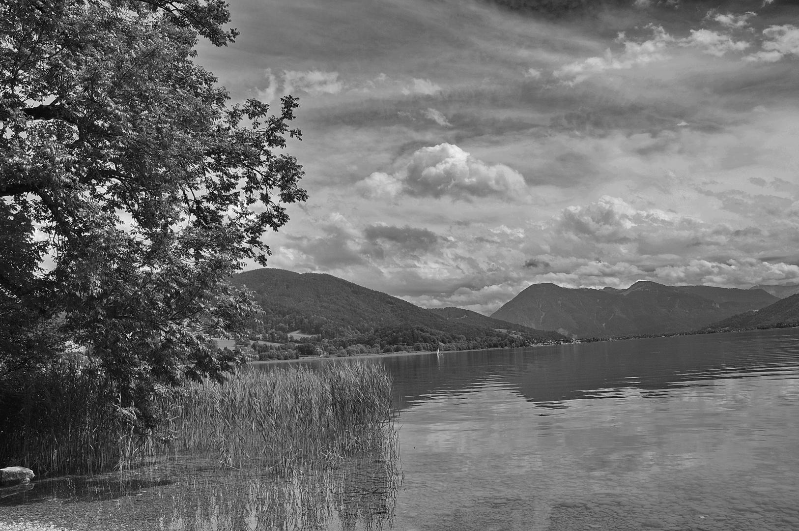 Blick über den See...