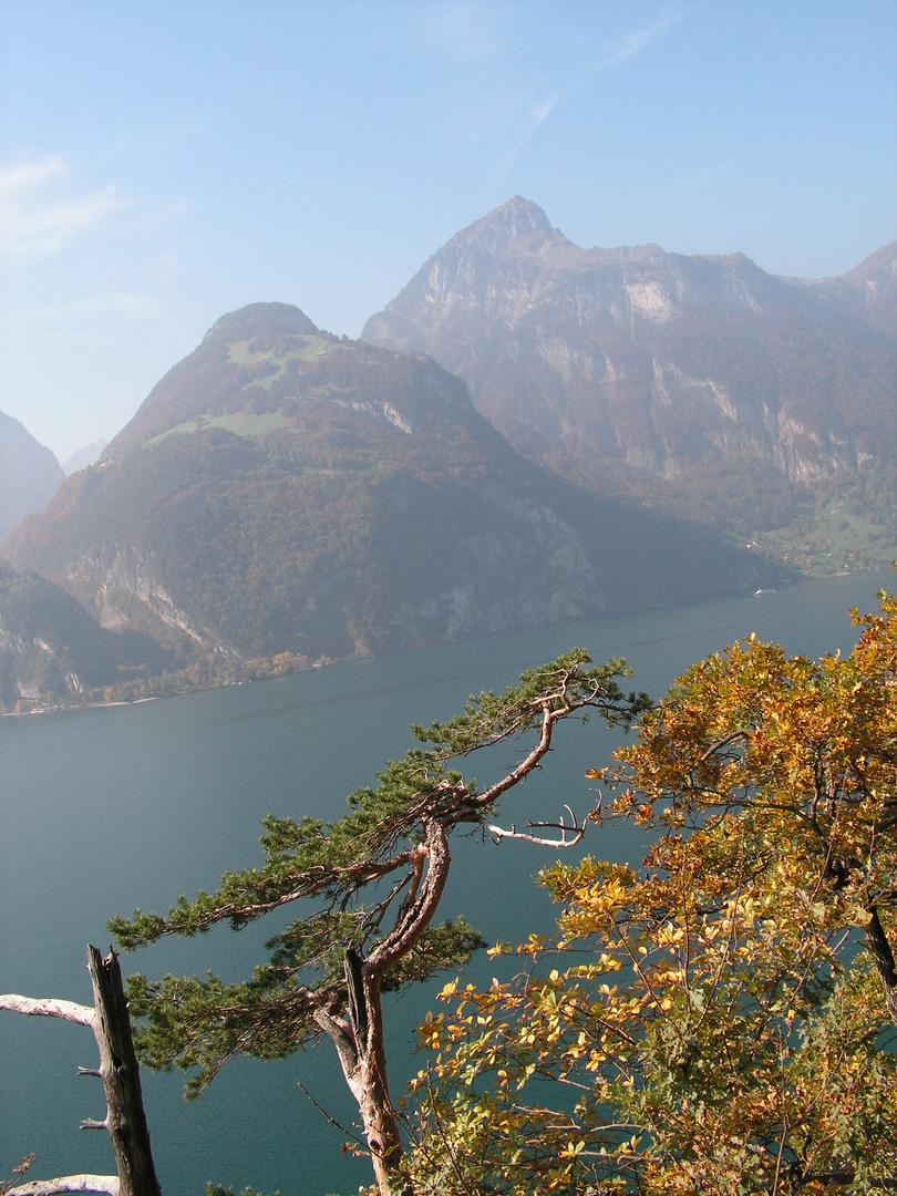 Blick über den Urner See