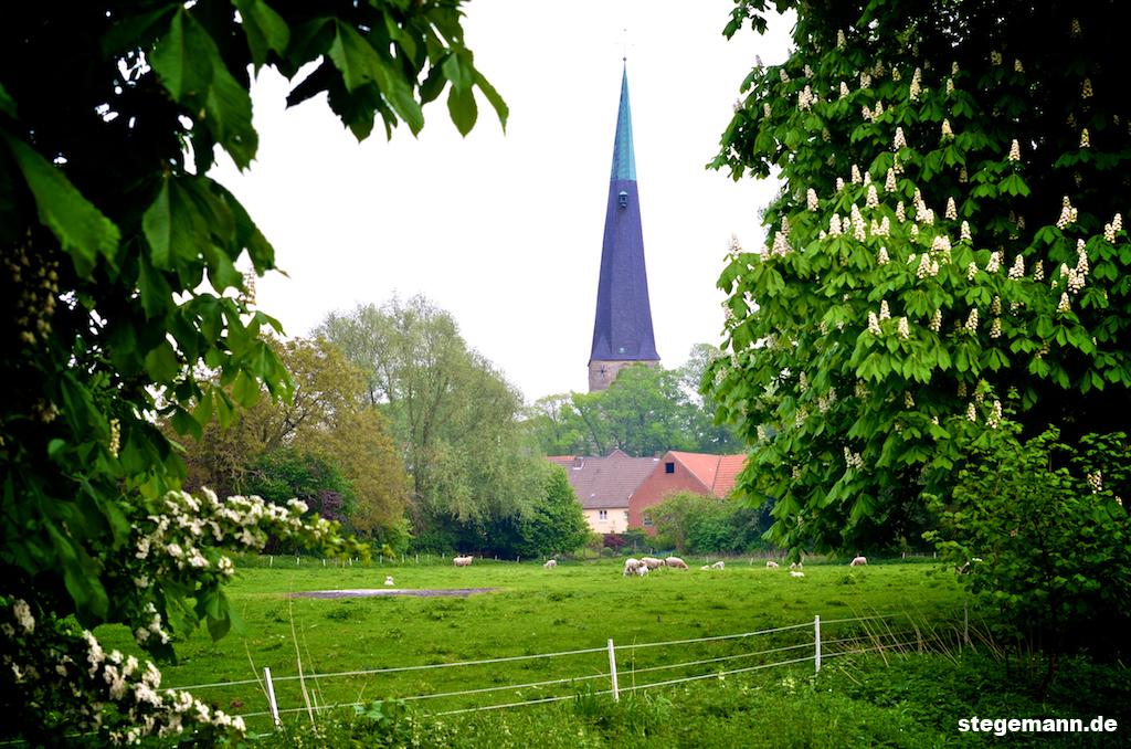Blick über die Berkel und Weide auf die Stadt Billerbeck.