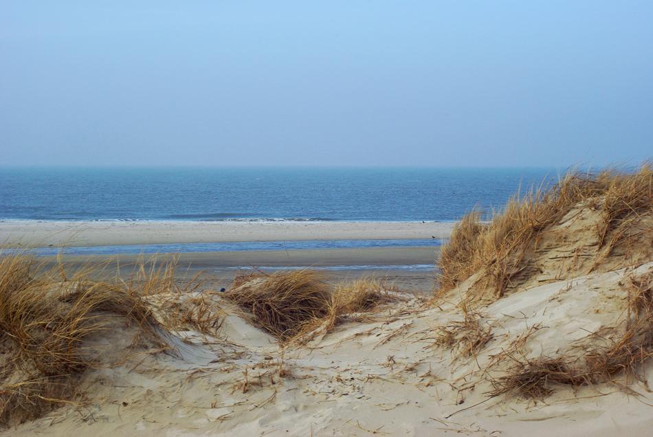 Blick über die Dünen zum Meer