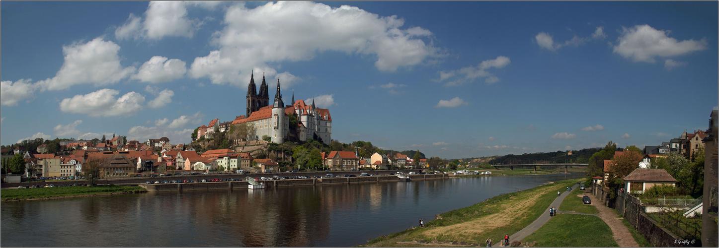 - Blick über die Elbe -