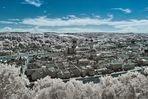 Blick über Passau in Infrarot