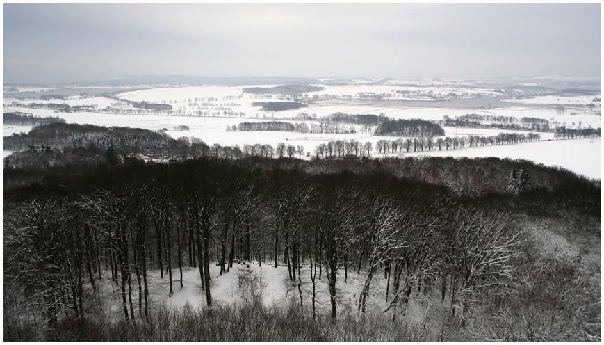 Blick vom Aussichtsturm Jagdschloss Granitz