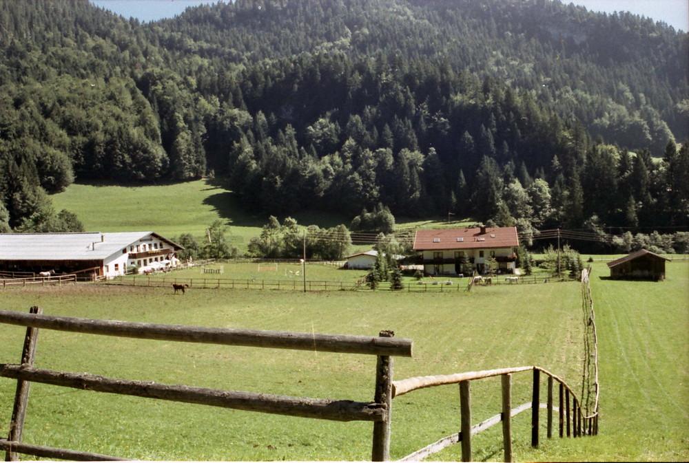 Blick vom Berg aus auf unsere Unterkunft in Tiefenbach