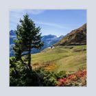 Blick vom Gotthardaussichtspunkt Richtung Bedrettotal