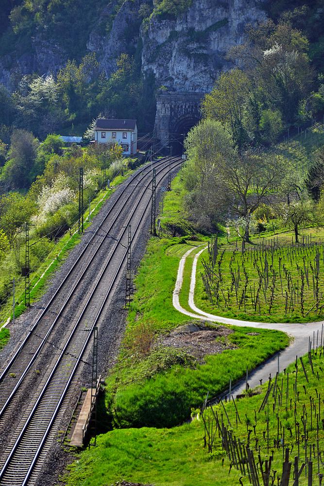 Blick vom Kirchberg in Istein