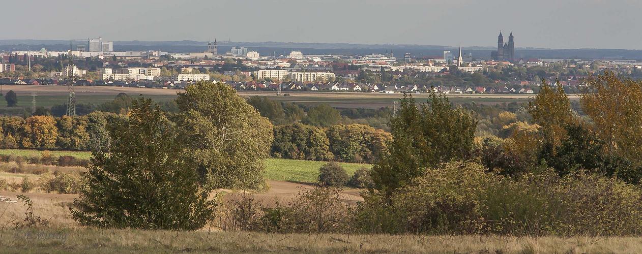 Blick vom Kreuzberg Richtung Magdeburg