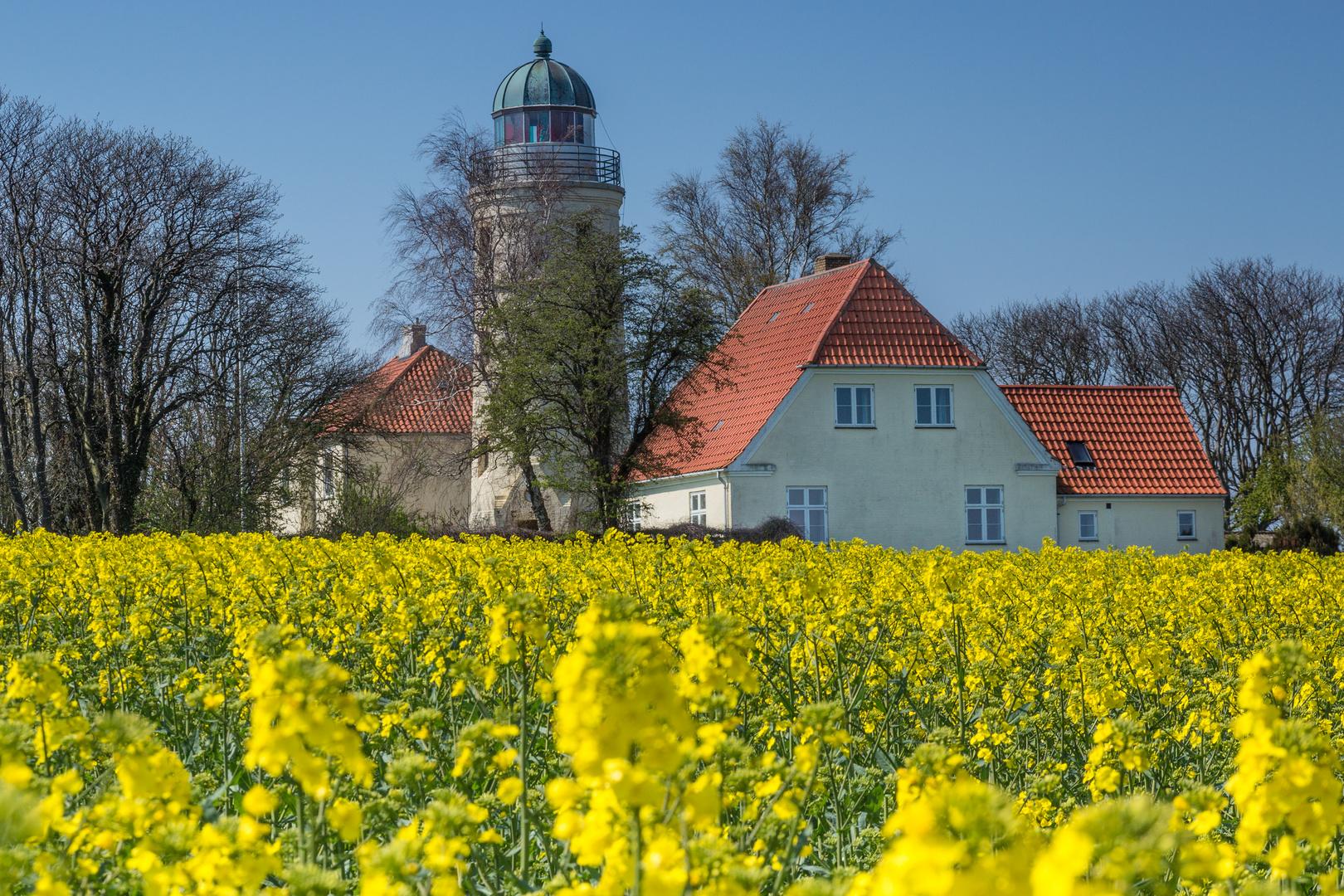 Blick vom Leuchtturm auf Kegnæs #52152