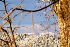 Blick vom Magdalensberg...