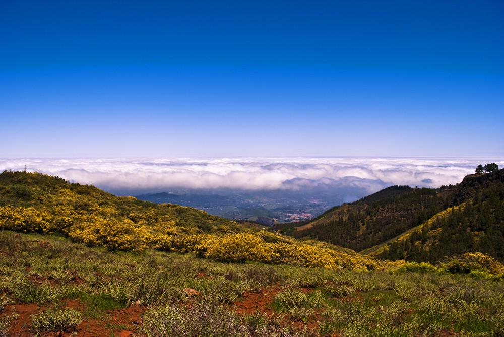 Blick vom Pico de la Nieves