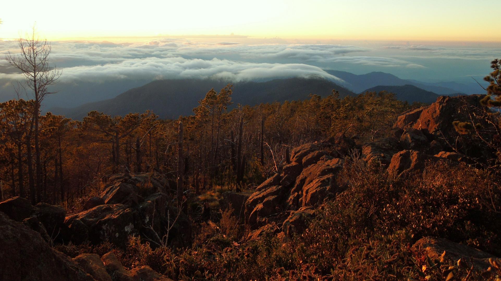 Blick vom Pico Duarte am Morgen