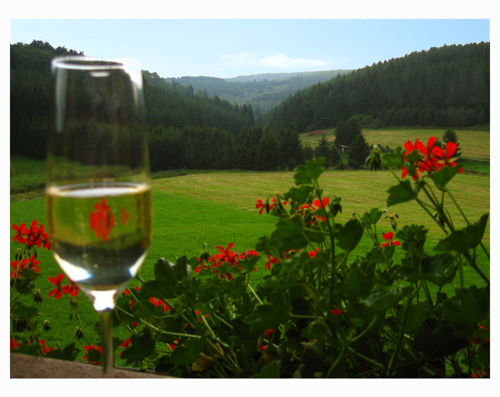 Blick vom Romantikhof-Balkon Sauerland
