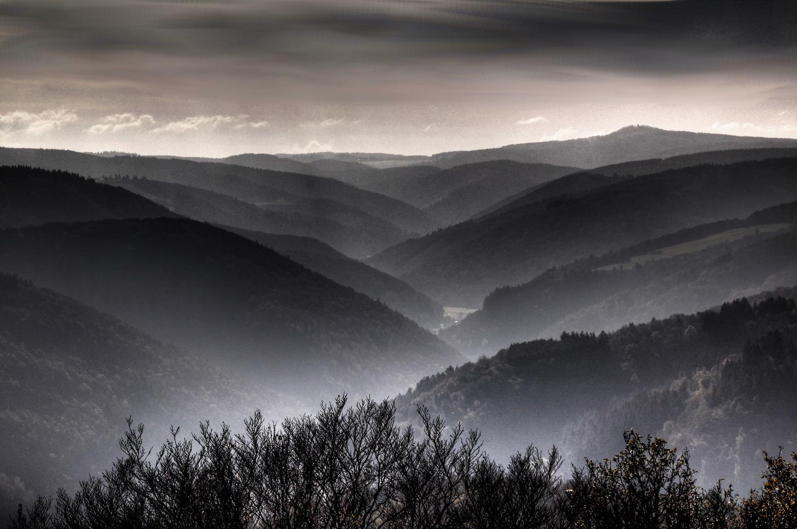 Blick vom Steinerberg